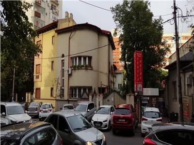 Vila P+1 Teiul Doamnei stradal